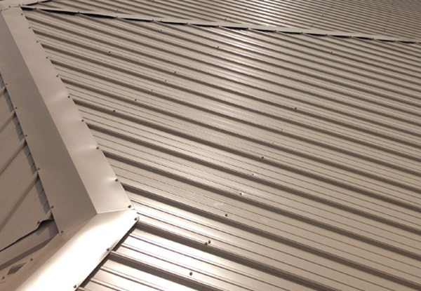 United General Service (UGS) - Metal Roofing